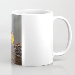 Baltimore Orioles - A Dysfunctional Family - A Nature Art Print Coffee Mug