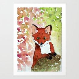 Peek-A-Boo Fox Art Print