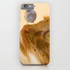cat and Bird iPhone 6s Slim Case