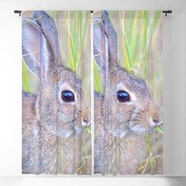 Watercolor Mountain Cottontail Rabbit 2 Blackout Curtain