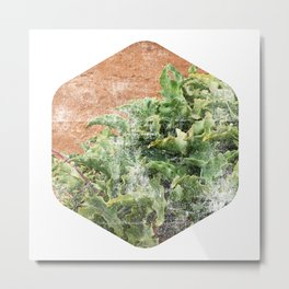 abstract nature art print, minimalist art plant, minimalist scandinavian design, hexagon wall art, geometric nature wall art print succulent Metal Print