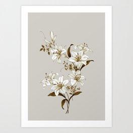 Flowers 9 Art Print