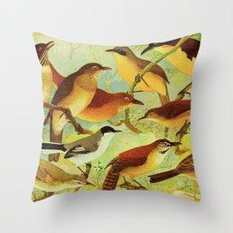 Amazonian birds by Göldi & Emil August, 1859-1917 Belem Brazil Colorful Tropical Birds Throw Pillow