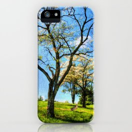 Under the Dogwoods iPhone Case