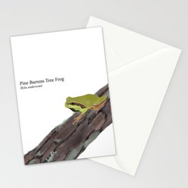 Pine Barrens Tree Frog (Hyla andersonii) on Pitch Pine Log Stationery Cards