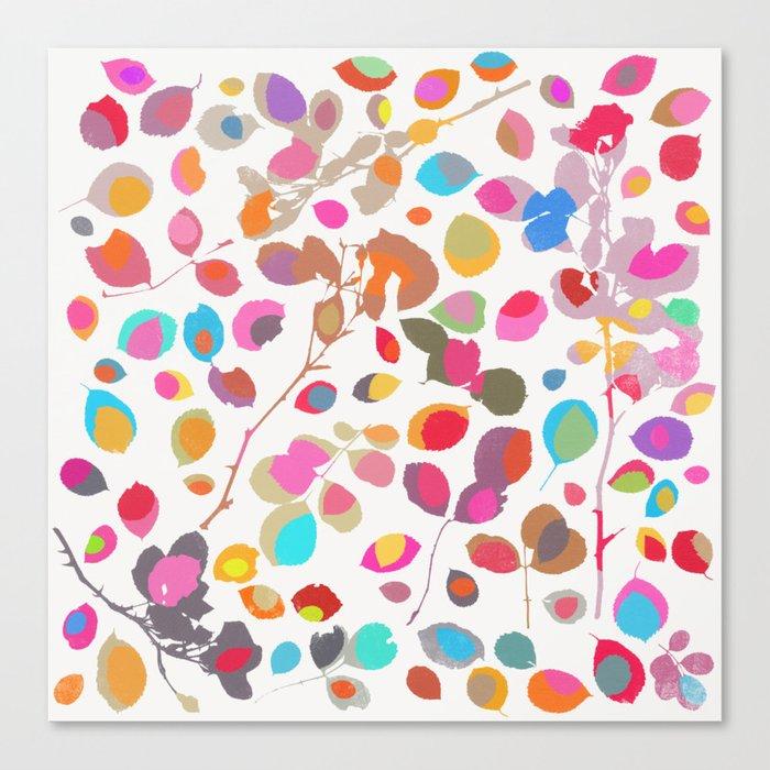 wildrose 5 Canvas Print