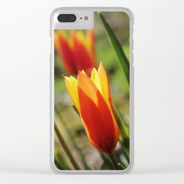 Windy Day Tulips Clear iPhone Case