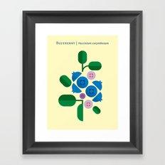 Fruit: Blueberry Framed Art Print