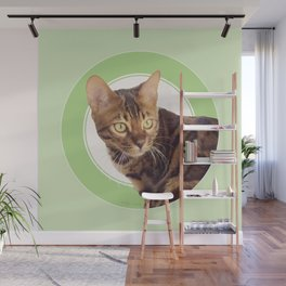 Boris the cat - Boris le chat Wall Mural