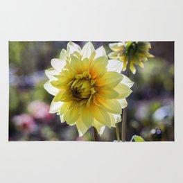 Dahlia In The Garden / 30 Rug