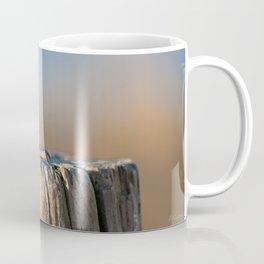 Seagull - Animal  photography #Society6 Coffee Mug