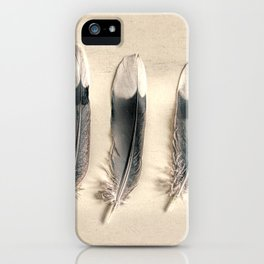 Dove Feathers Still Life Modern Cottage Modern Country Matted Picture USA A129 iPhone Case