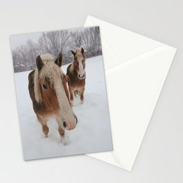Horse Pair Stationery Cards