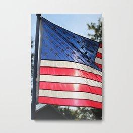 U.S.A. Metal Print