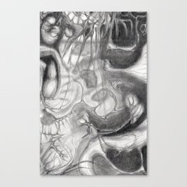 Lo1 - Detail II Canvas Print