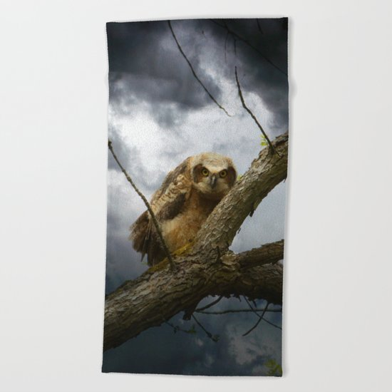 The seer of souls Beach Towel