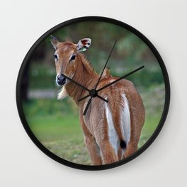 Persian Gazelle Wall Clock