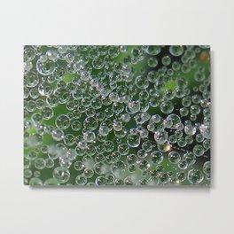 dew drops on a web Metal Print