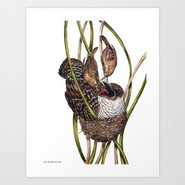 Baby Bird II Art Print