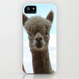 Alpaca iPhone Case