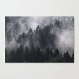 Mistic Forest Canvas Print