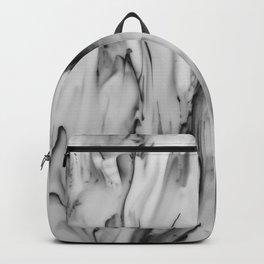 The melt Backpack