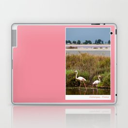 Flamingos in Camargue Laptop & iPad Skin