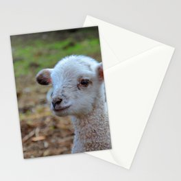 baa-lamb Stationery Cards