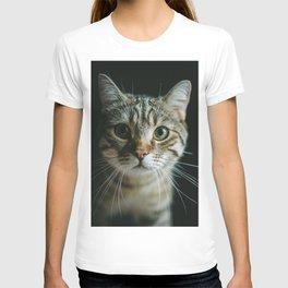 Portrait of a Cat T-shirt