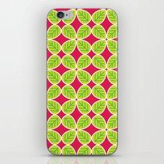 Primrose Collection 4 iPhone & iPod Skin