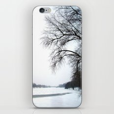 frozen lake. iPhone & iPod Skin