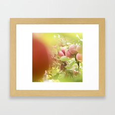 autumn in my heart Framed Art Print