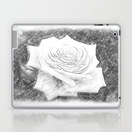 Pink Roses in Anzures 4 Charcoal Laptop & iPad Skin