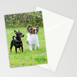 Outdoor portrait of a miniature pinscher and papillon purebreed dogs on the grass Stationery Cards