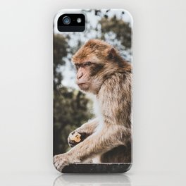 Macaque iPhone Case