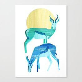 Antilopes in the sun Canvas Print