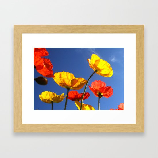 Happy Poppies by marywhitmer