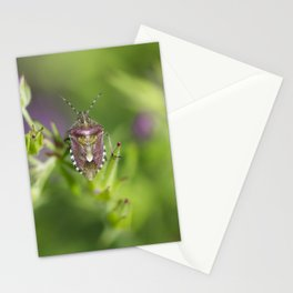 Spring bug Stationery Cards