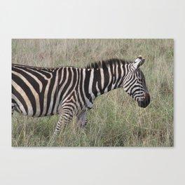 Striped Pyjamas Canvas Print