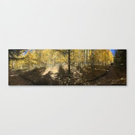 Aspens in the Crags Canvas Print