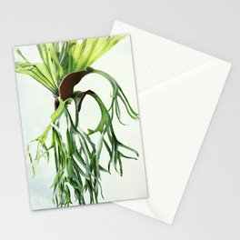 Staghorn Stationery Cards