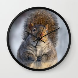 Squirrel Peched Wall Clock