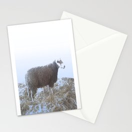 Solitude on straw Stationery Cards