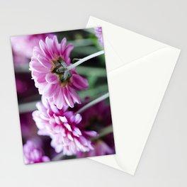 Padre Cerise Belgian Mum Pair Stationery Cards