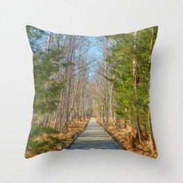 Jesup Boardwalk Trail Throw Pillow