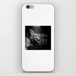 Dogs with game face on .27 iPhone Skin