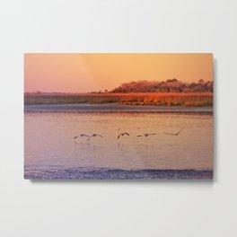 Seabirds at Sunset Metal Print