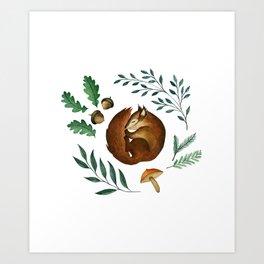Sleepy Squirrel Art Print