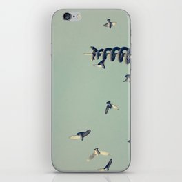 Flying Pigeons and Snakes iPhone Skin