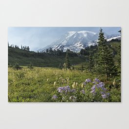 Wildflowers and Mount Rainier Canvas Print